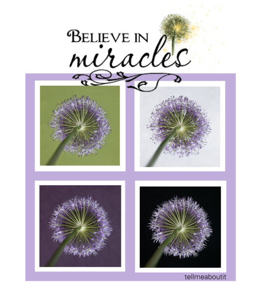 Believeinmiracles