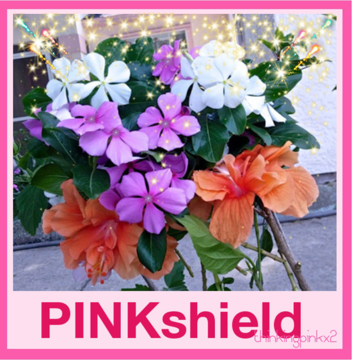 Pinkshield