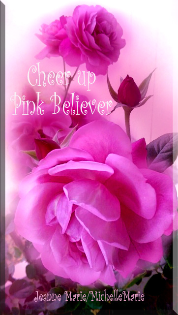 cheerupPinkBeliever