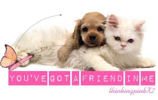 you'vegotafriendinme