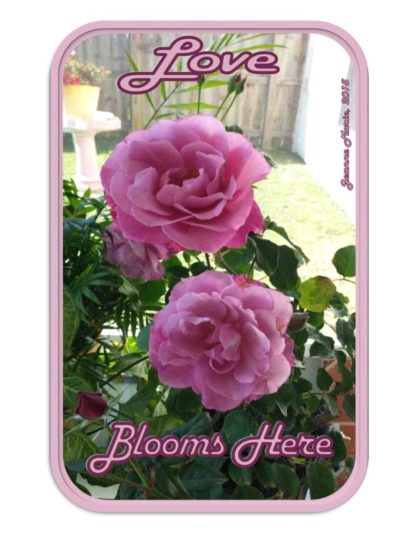 loveblooms