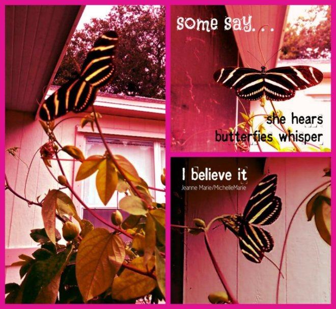 butterflywhispers